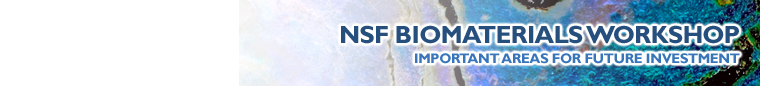 NSF Biomaterials Workshop